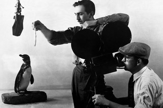Walt Disney feeding a penguin while the cameraman records every move. Photo by Hulton-Deutsch / Corbis from Getty Images